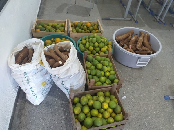 AGRIPAC faz entrega de alimentos para Escolas da Rede Estadual de Peixoto de Azevedo