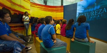 Onça-pintada é tema de exposição interativa no Pantanal